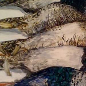 pheasant_preview